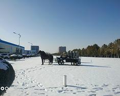 有失有得-----2019冬日下 内蒙古呼和浩特之旅