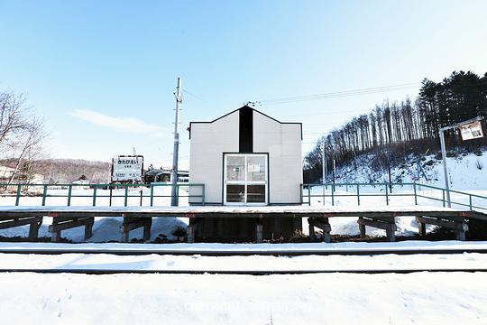 美瑛町旅游景点图片