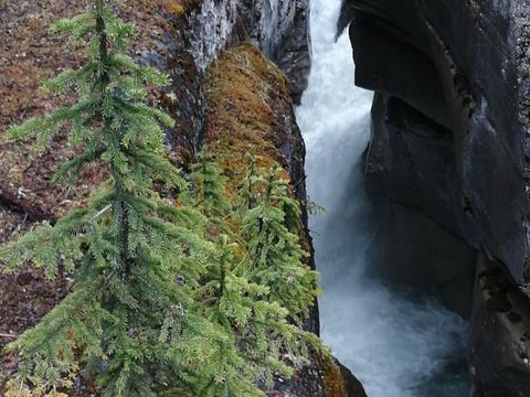 玛琳峡谷旅游景点图片