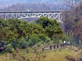 赞比亚旅游景点攻略图片