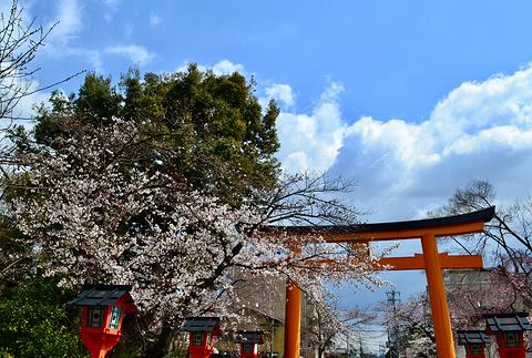 平野神社旅游景点攻略图