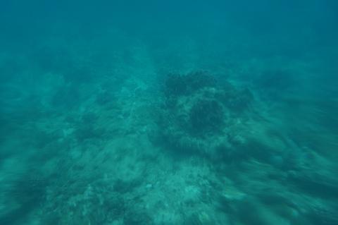 长滩岛浮潜店