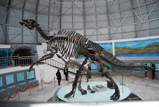 嘉荫恐龙国家地质公园旅游景点图片