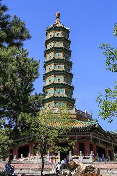须弥福寿之庙的图片