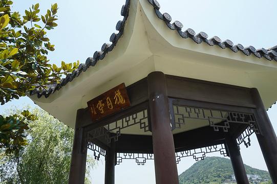 望湖亭旅游景点图片