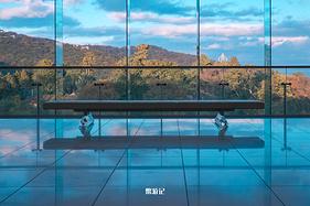 【鳖游记】初冬东京、箱根、热海、汤河原小旅行——温泉、大海、美术馆与红叶