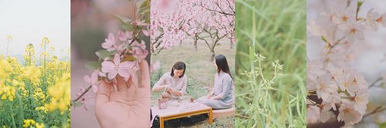 春日物语|细品草长莺飞、落英缤纷·莫干山轻松漫步二日