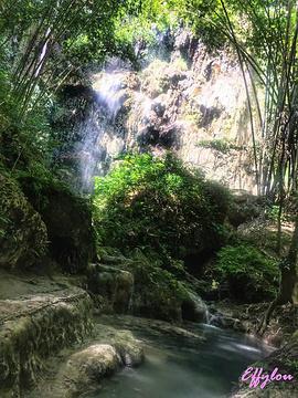 Tumalog Falls的图片