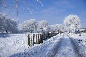 【11月下旬·攻略】玩在吉林,吃在延吉,这样的赏冬之旅才优雅!