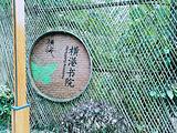 乌镇横港国际艺术村