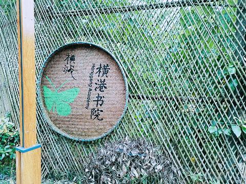 乌镇横港国际艺术村旅游景点攻略图