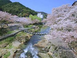 日本山口县4日3晚深度游-打卡小众景点,观瑠璃光寺五重塔 亲手制作金鱼灯。