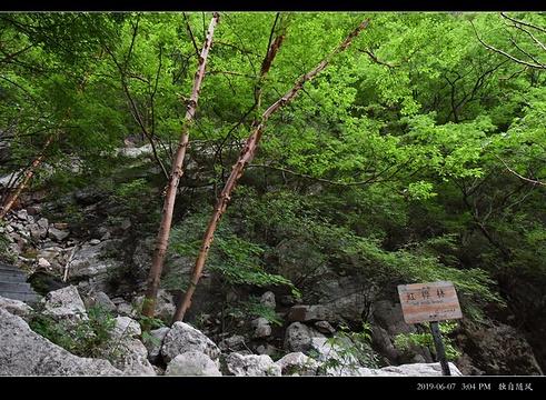 黑山大峡谷旅游景点图片