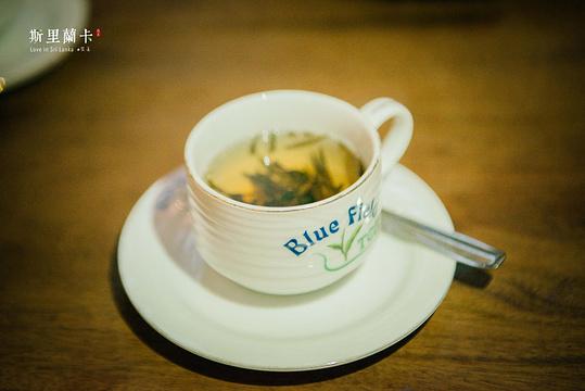 蓝房子茶厂旅游景点图片