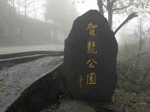 贺龙公园旅游景点图片