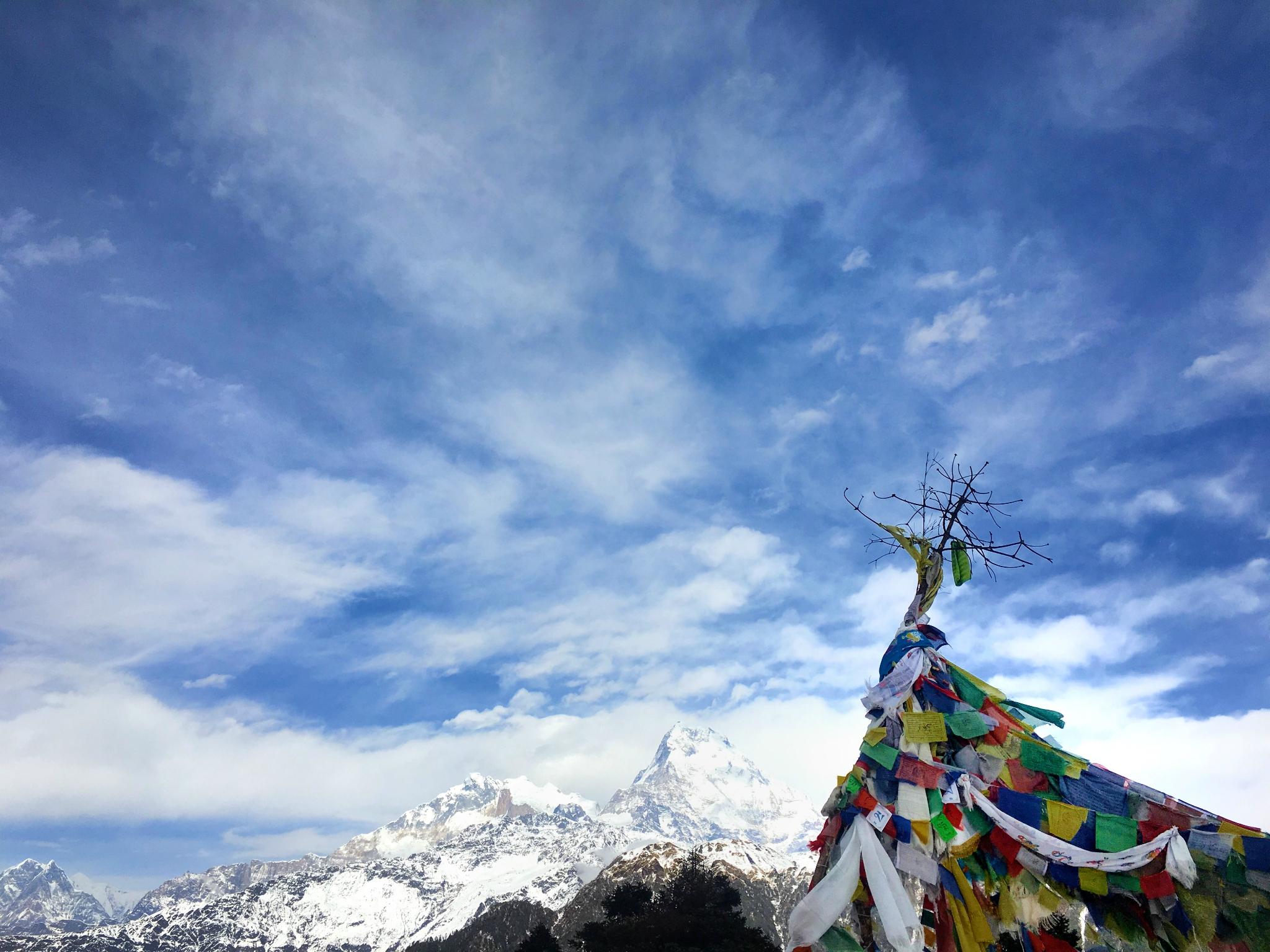 独行尼泊尔之徒步ABC、闲逛博卡拉、朝圣蓝毗尼、聆听加德满都