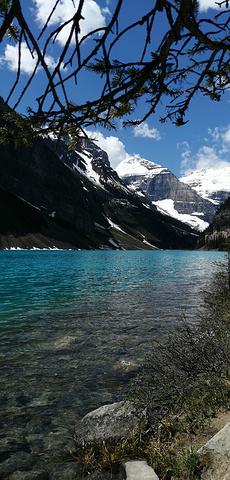 """""""不愧为班夫最美丽的湖,湖水的颜色像是画上去的,明艳的那么不真实,环绕的雪峰却又那么近在咫尺的真切_露易丝湖""""的评论图片"""