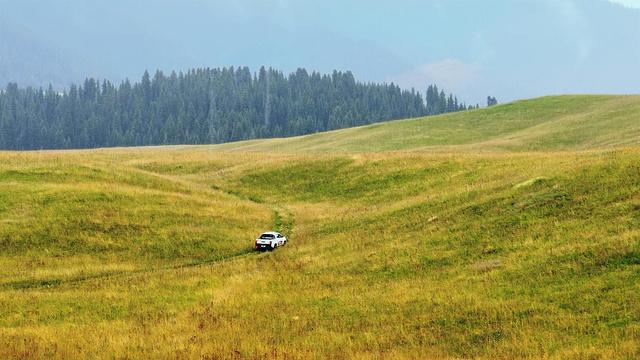 昭苏牧场旅游景点图片