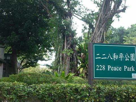 二二八和平公园旅游景点图片