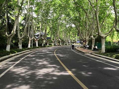 钟山风景名胜区旅游景点图片