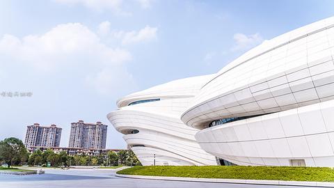 梅溪湖国际文化艺术中心大剧院