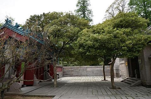崂山太清宫景区