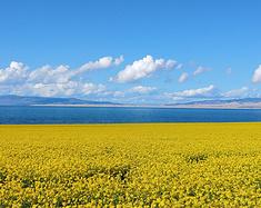 西北寻梦——让身心飞翔在青甘高原的湖泊、戈壁、沙漠、草原上