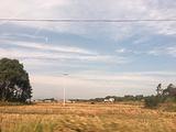 岳阳县旅游景点攻略图片