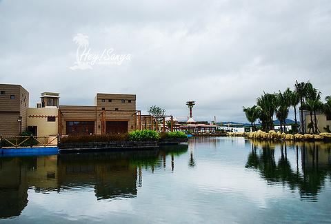 三亚海昌梦幻海洋不夜城的图片