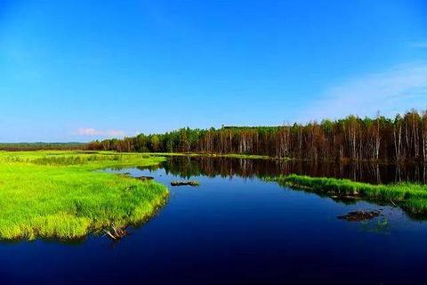 乌伊岭源头湾景区旅游景点攻略图