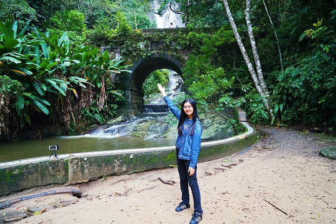 蒂如卡国家公园 Tijuca Forest National P图片