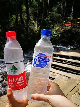 长白山峡谷浮石林
