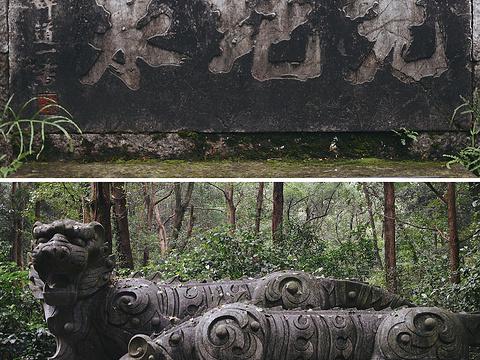 虎跑公园旅游景点图片