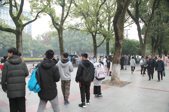 """""""大学城的每个学校都是开放的,可以随意进入参观学习,没有门票呀_湖南大学""""的评论图片"""