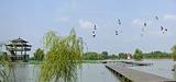 双龙湖观鸟园