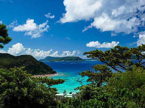 渡嘉敷岛旅游景点图片