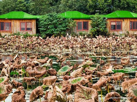 曹禺纪念馆旅游景点图片