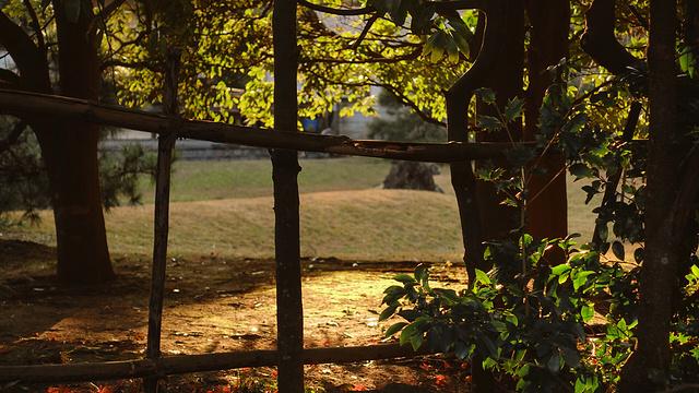 建长寺旅游景点图片