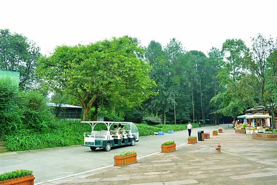 象山古镇旅游景点图片