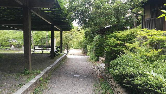 圆山公园旅游景点图片