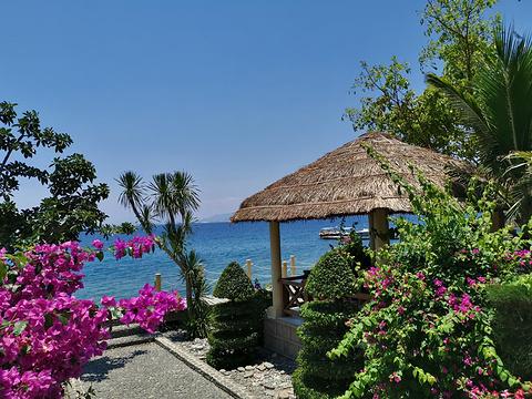 墨岛旅游景点图片