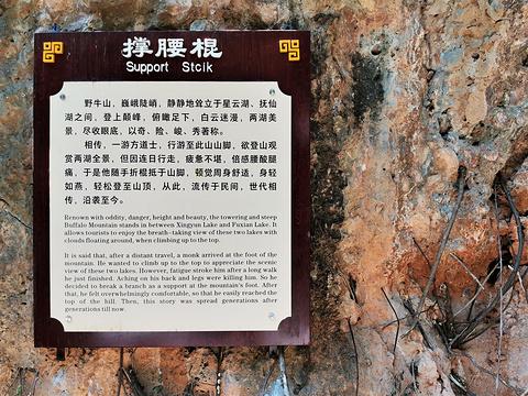 界鱼石旅游景点图片