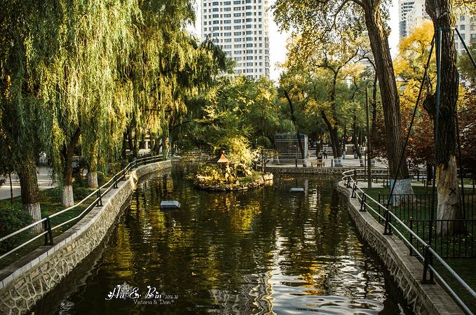 兆麟公园,圣索菲亚教堂,中央大街图片