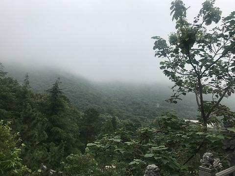 崂山太清宫景区旅游景点图片