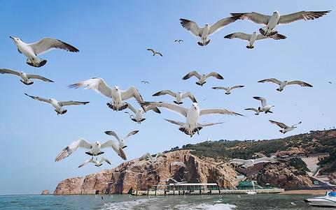 海驴岛旅游景点攻略图