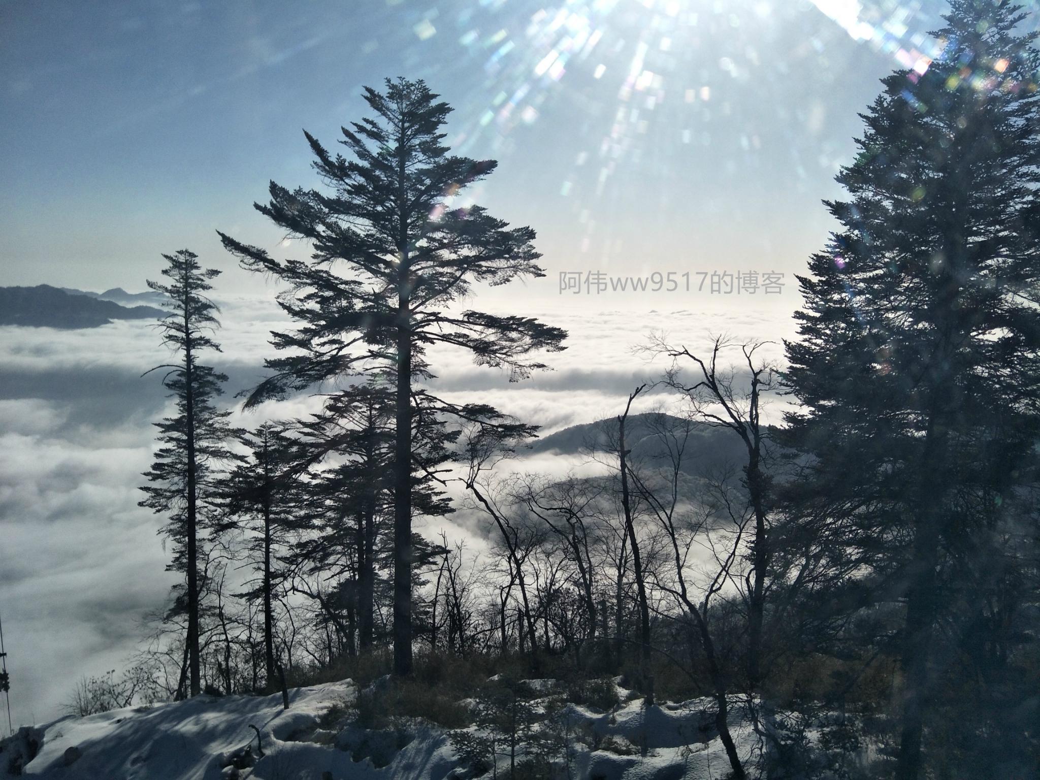 都江堰和西岭雪山三日亲子自助游