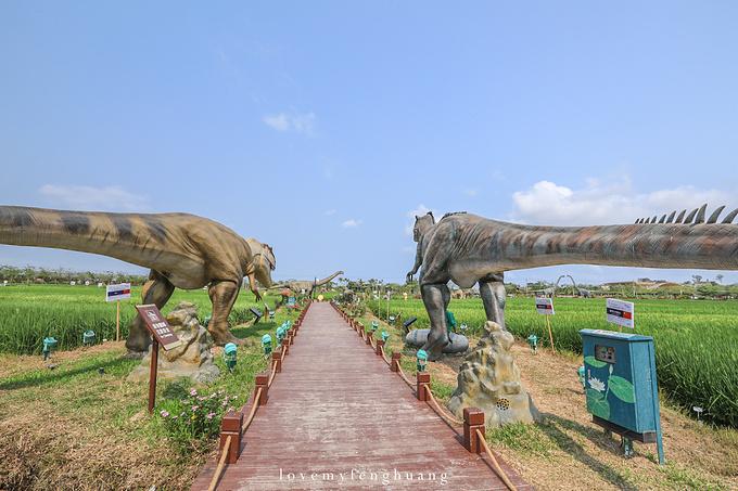 水稻国家公园图片