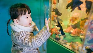 亲子旅行  换一种思路游杭州,第一世界+两大乐园玩不停