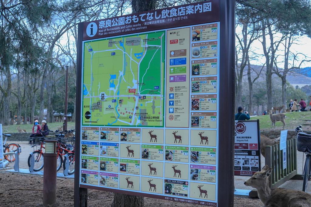 奈良公园旅游导图