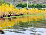 楚雄市旅游景点攻略图片
